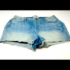 Torrid Blue Jean Shorts